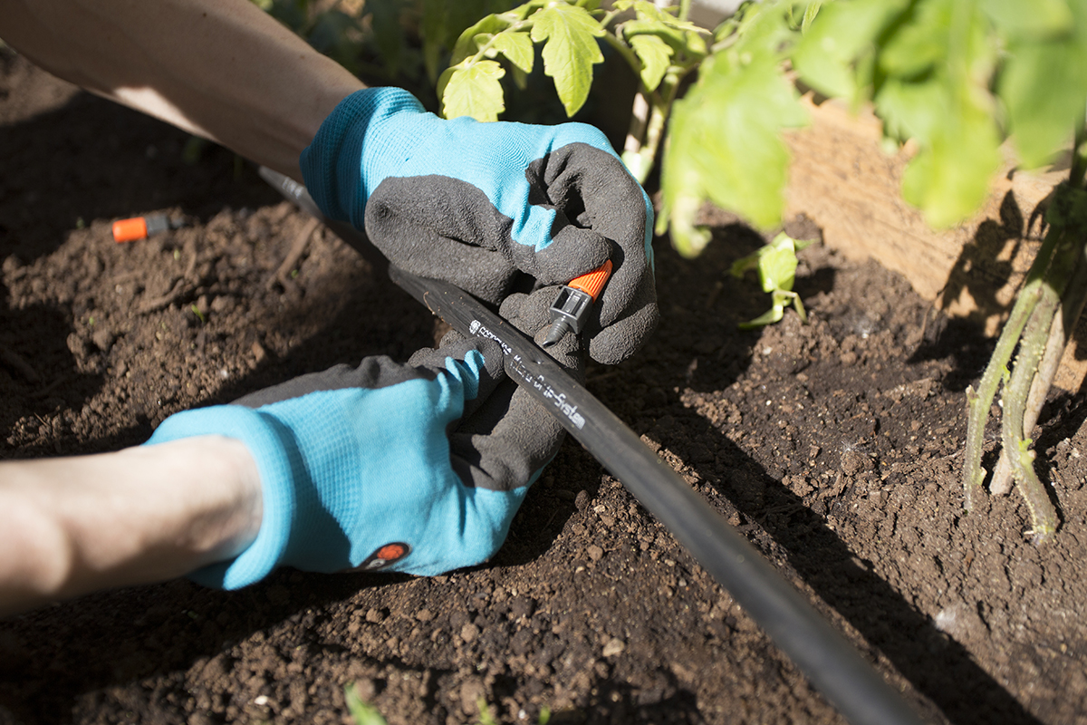 Install your micro-irrigation system in 10 steps